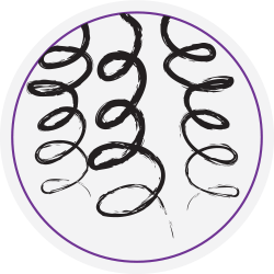 Image result for curly hair icons